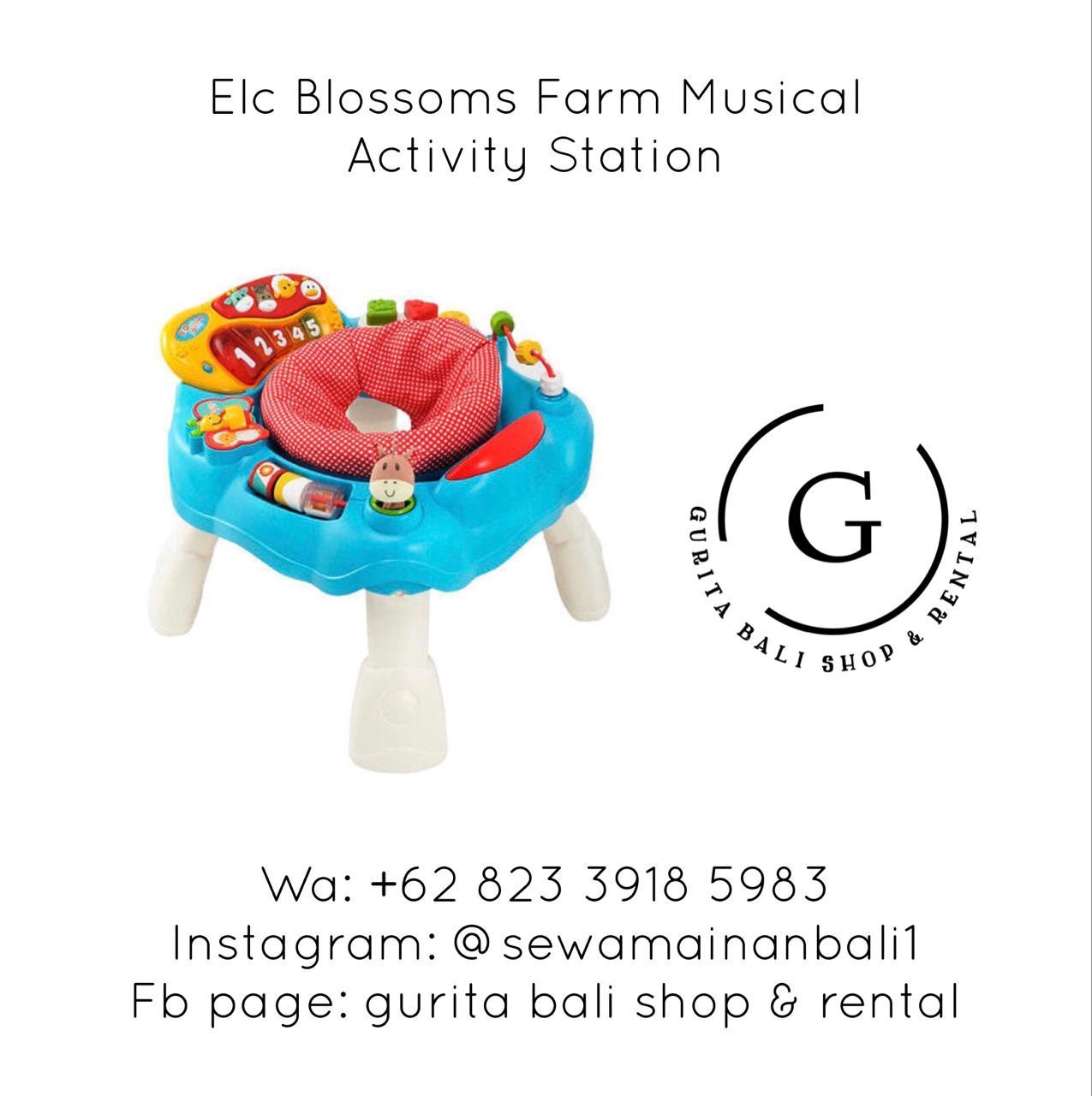 ELC BLOSSOM FARM MUSICAL ACTIVITY STATION